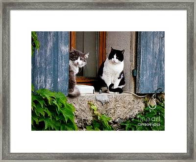 Waiting For Dinner Framed Print by Lainie Wrightson