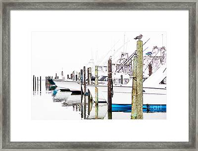 Waiting For Food - Outer Banks Framed Print by Dan Carmichael