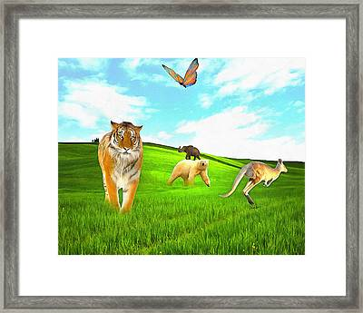 Waiting For Noah Framed Print by Anthony Caruso