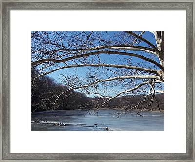 Waiting For Spring Framed Print by Monnie Ryan