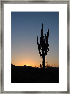 Waiting For The Sun Framed Print by Edward Curtis