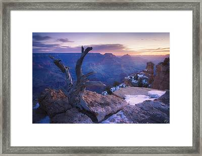 Waiting For The Sun Framed Print by Peter Coskun