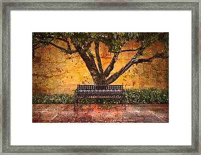 Waiting For You Framed Print by Debra and Dave Vanderlaan