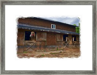 Waiting To Go Out In Field Framed Print by Dan Friend
