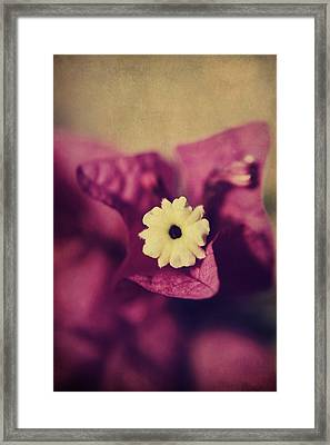 Waking Up Happy Framed Print by Laurie Search