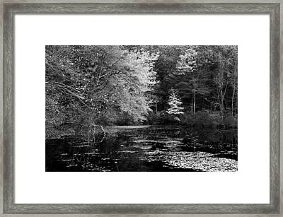 Walden Pond Framed Print by Christian Heeb