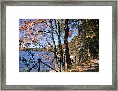 Walden Pond Framed Print by Eunice Harris