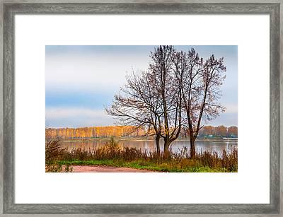 Walk Along The River Bank Framed Print by Jenny Rainbow