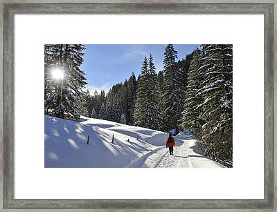 Walk In Sunny Winter Landscape Framed Print by Matthias Hauser