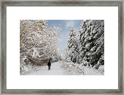 Walk In The Winterly Forest With Lots Of Snow Framed Print by Matthias Hauser