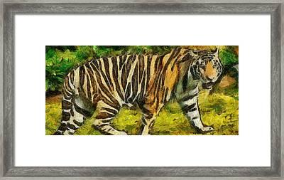 Walk The Tiger Framed Print by Georgi Dimitrov