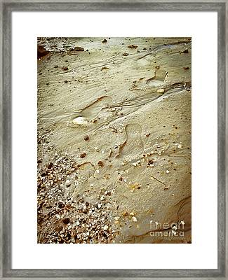 Walk With Me Framed Print by Colleen Kammerer