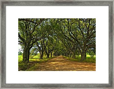 Walk With Me Framed Print by Steve Harrington