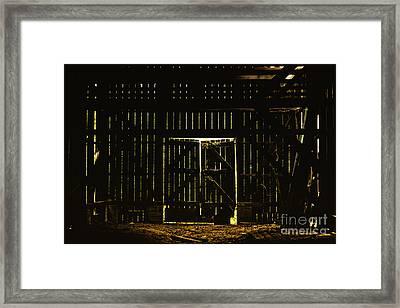 Walking Dead Framed Print by Andrew Paranavitana