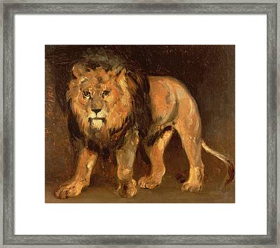 Walking Lion Framed Print by Theodore Gericault