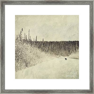 Walking Luna Framed Print by Priska Wettstein