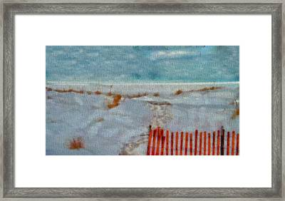 Walking On The Beach Framed Print by Dan Sproul
