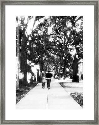 Walking The Dog Framed Print by John Rizzuto