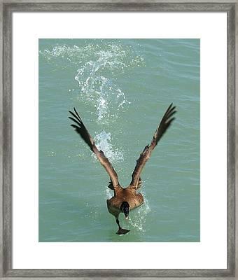 Walks On Water Framed Print by LJAS Cunnea
