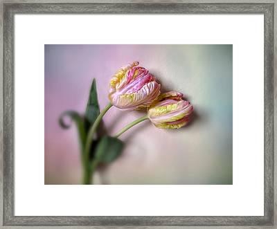 Wall Flowers Framed Print by Jessica Jenney