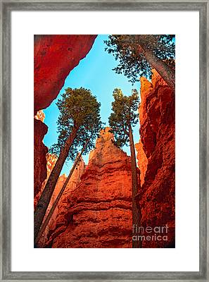 Wall Street Framed Print by Robert Bales