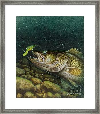 Walleye And Crank Bait Framed Print by Jon Q Wright