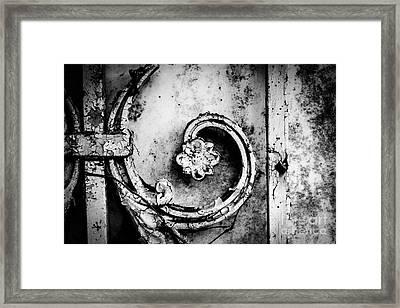 Wallflower Framed Print by Dean Harte