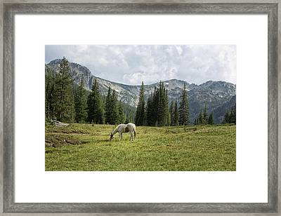 Wallowas - No. 2 Framed Print by Belinda Greb