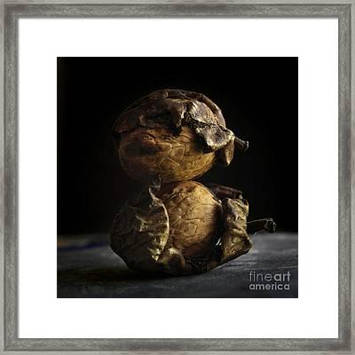 Walnut Framed Print by Bernard Jaubert