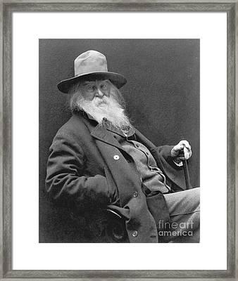 Walt Whitman 1887 Framed Print by Padre Art