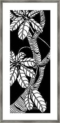 Wandering Leaves Octopus Tree Design Framed Print by Mukta Gupta