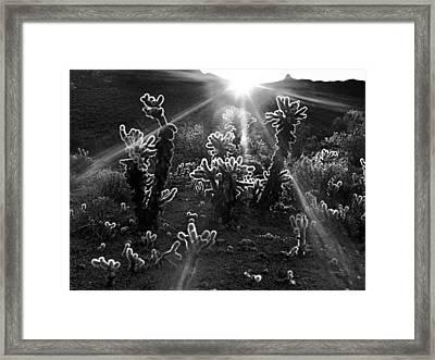 Warm Desert Sunrise Framed Print by Leland D Howard