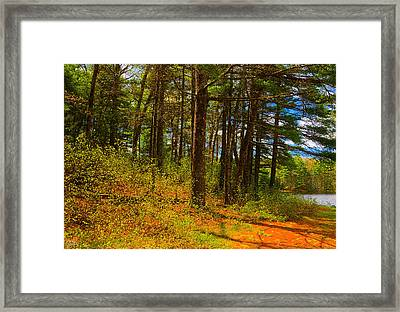 Warm Embrace Framed Print by Lourry Legarde