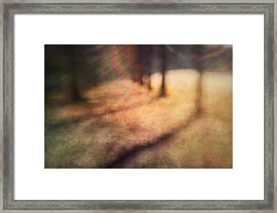 Warner Park Sunrise Framed Print by David Morel