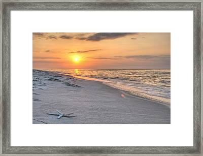 Washed Up On Orange Beach Framed Print by JC Findley