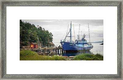 Washington, San Juan Islands, Stuart Framed Print by Matt Freedman