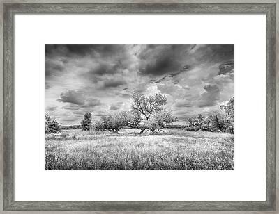 Washita Framed Print by Harry H Hicklin