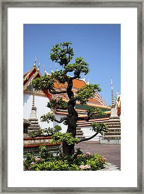 Wat Pho - Bangkok Thailand - 011323 Framed Print by DC Photographer
