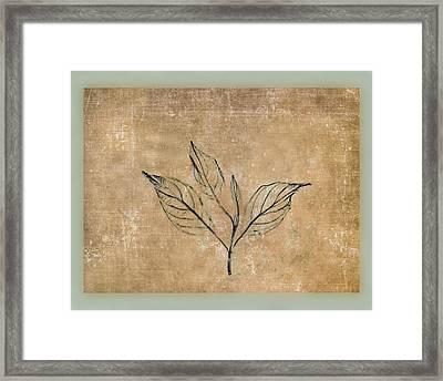 Watch A Leaf Framed Print by Bob RL Evans