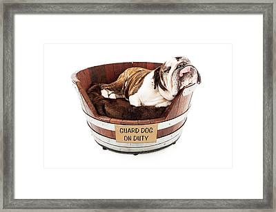 Watch Dog Sleeping On Job Framed Print by Susan  Schmitz