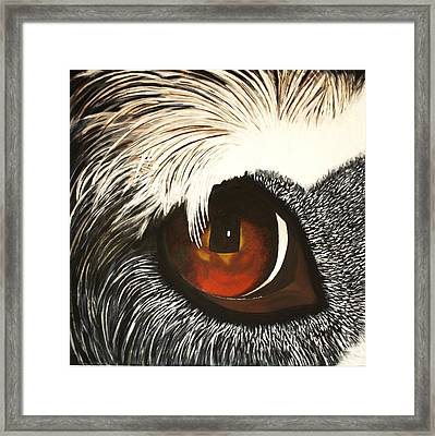 Watchful Framed Print by Lisbet Damgaard