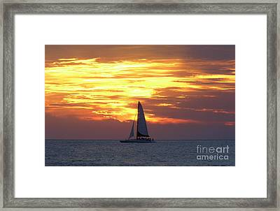 Watching Fire In The Sky Framed Print by D Hackett