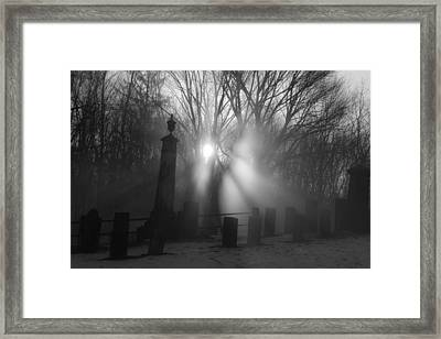Watching Over Bw Framed Print by Karol Livote