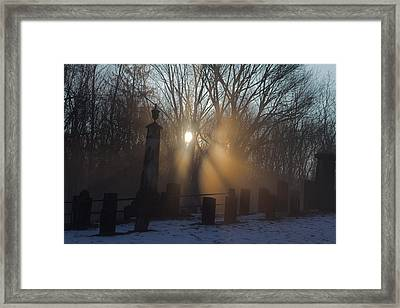 Watching Over Framed Print by Karol Livote