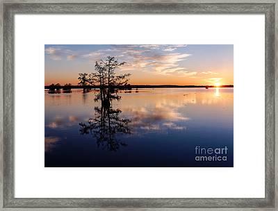Watching The Sunset At Ba Steinhagen Lake Martin Dies Jr. State Park - Jasper East Texas Framed Print by Silvio Ligutti