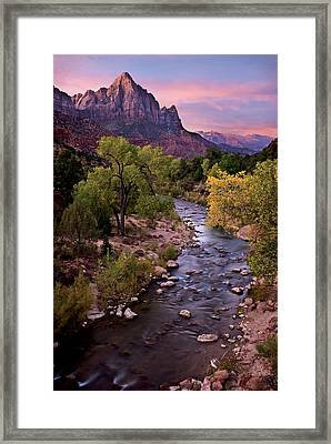 Watchman  Tower Zion Sunrise Framed Print by Dave Dilli