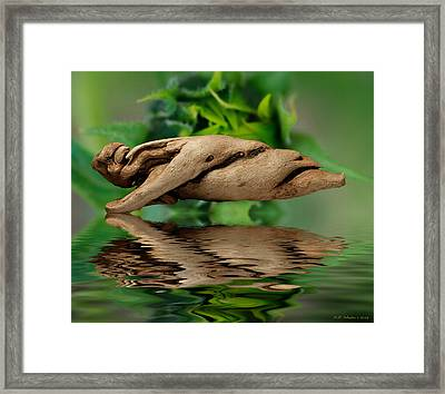 Water Balance Framed Print by WB Johnston