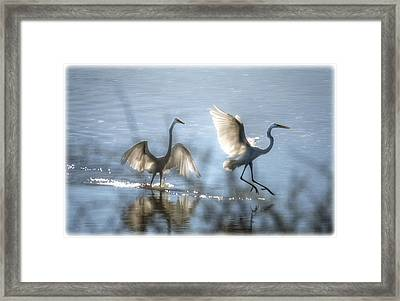 Water Ballet  Framed Print by Saija  Lehtonen