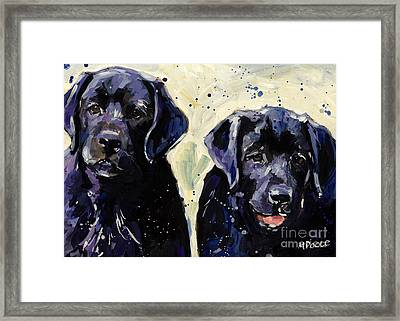 Water Boys Framed Print by Molly Poole