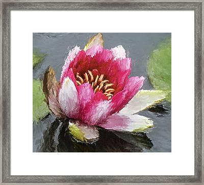 Water Flower Impression Framed Print by Yury Malkov